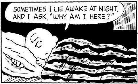 Come ti capisco, Charlie!